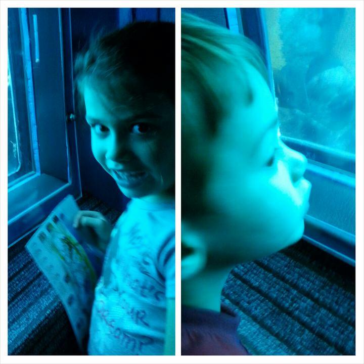 המצפה התחתון חלון לכל ילד צילום טלי בריל